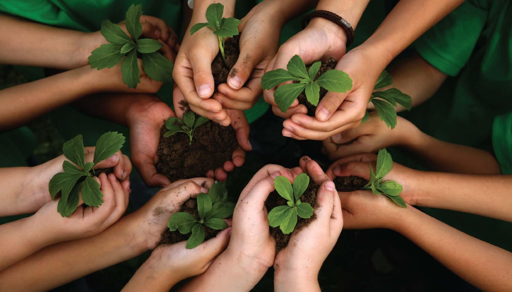 Vagas Previstas Concurso Ministério do Meio Ambiente